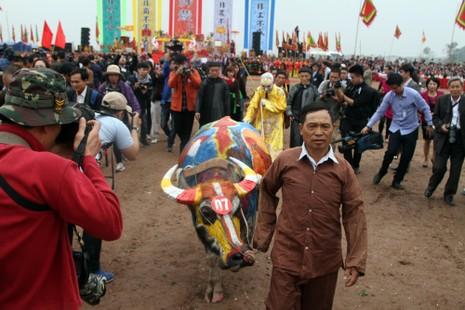 Hình ảnh trâu 'cõng' gà trống trong lễ hội Tịch Điền - ảnh 11