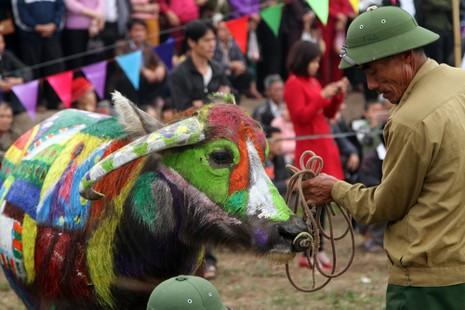 Hình ảnh trâu 'cõng' gà trống trong lễ hội Tịch Điền - ảnh 7