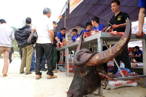 Giá thịt trâu chọi đắt gấp 3 - 4 lần thịt trâu thường - ảnh 3