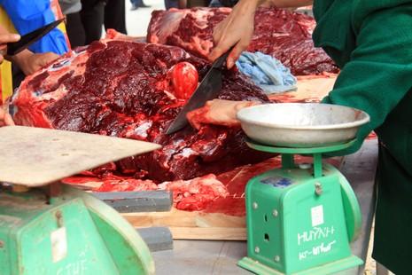 Giá thịt trâu chọi đắt gấp 3 - 4 lần thịt trâu thường - ảnh 8
