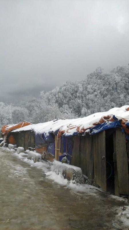Tuyết phủ trắng ở Nghệ An như... châu Âu - ảnh 2