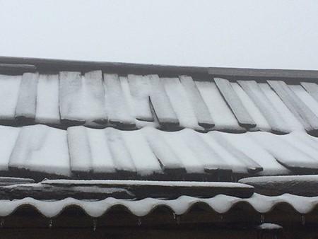 Tuyết phủ trắng ở Nghệ An như... châu Âu - ảnh 8