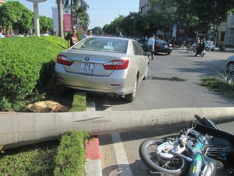 Xe ô tô tông xe máy, càn gãy cả cây cau vua lớn bên đường - ảnh 2