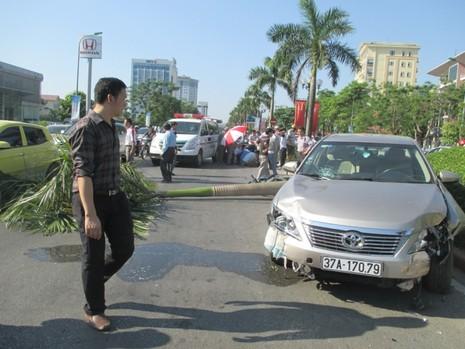 Xe ô tô tông xe máy, càn gãy cả cây cau vua lớn bên đường - ảnh 1