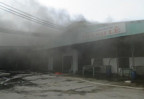 Cháy dữ dội ở nhà máy mủ cao su sấy khô - ảnh 1