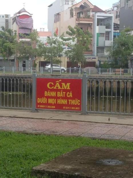 Người dân vô tư câu cá bất chấp bảng cấm có số điện thoại công an - ảnh 1