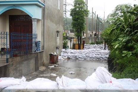 Cuộc chiến ngăn 'bom than' ở Mông Dương - ảnh 2