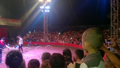 Vụ rạp xiếc sập khán đài: lượng khách quá tải đến 40% - ảnh 1