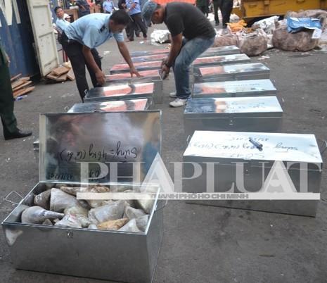 Hơn 735 kg ngà voi và sừng tê giác 'sa lưới' ở cảng miền Trung - ảnh 8