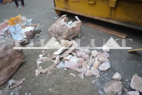 Hơn 735 kg ngà voi và sừng tê giác 'sa lưới' ở cảng miền Trung - ảnh 2