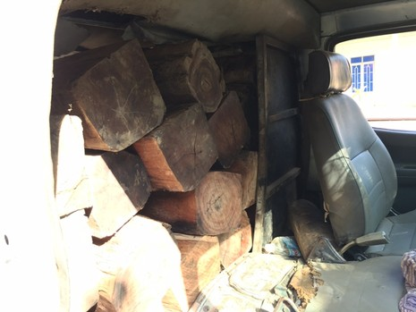 Bị phát hiện chở gỗ lậu, lâm tặc đập vỡ kính ô tô - ảnh 1