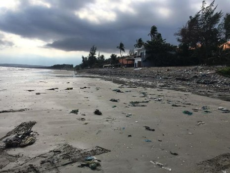 Hàng chục du khách nước ngoài tự nguyện dọn rác ở Mũi Né - ảnh 6