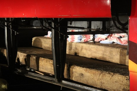 Bắt giữ gỗ lậu được che giấu tinh vi trên xe khách - ảnh 2