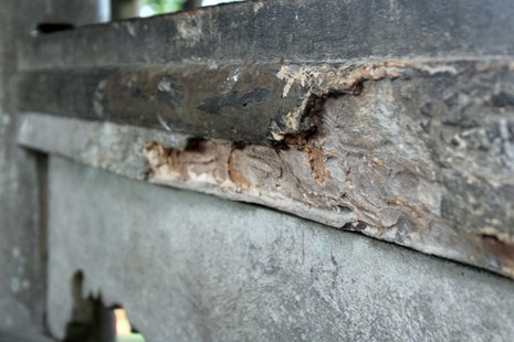 Cận cảnh cây cầu quý xứ Huế trước ngày trùng tu - ảnh 2