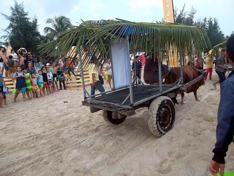 Độc đáo cuộc đua xe bò trên bãi biển ở La Gi - ảnh 5