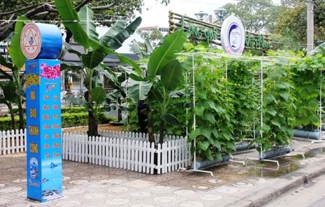 Đưa nông sản vào Hội hoa xuân                           - ảnh 7