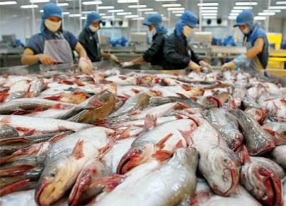 Mỹ sẽ 'soi' 100% các lô hàng thủy sản xuất khẩu từ Việt Nam  - ảnh 1