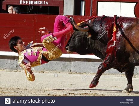 Bàng hoàng chứng kiến cảnh đấu sĩ bị bò tót tấn công đến chết - ảnh 3