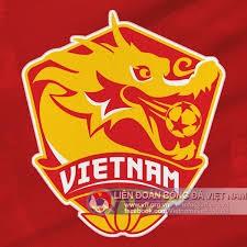 Biệt danh của đội tuyển Việt Nam là gì? - ảnh 1