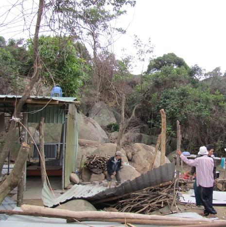Ngang nhiên dựng lán trại, mở đường vào... phá rừng Sơn Trà - ảnh 4