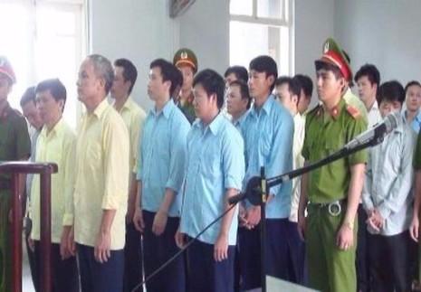 Các bị cáo trong đường dây phá rừng hầu tòa