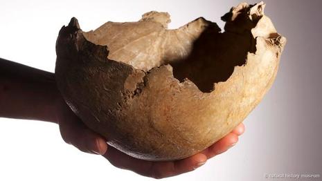 Bằng chứng tổ tiên con người từng ăn thịt lẫn nhau - ảnh 2