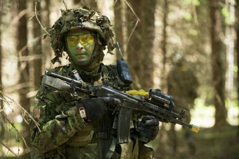NATO chuẩn bị tập trận 'Vòi rồng' tại Đông Âu - ảnh 1