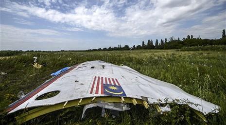 Malaysia yêu cầu Liên Hợp Quốc thành lập tòa án vụ MH17 - ảnh 2