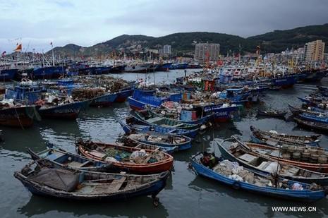 Hình ảnh của 'bộ ba siêu bão' ập vào Trung Quốc - ảnh 5