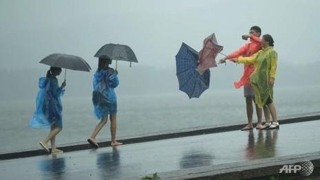 Siêu bão Chan-hom 'liếm' sang Hàn Quốc, hủy hàng chục chuyến bay - ảnh 1