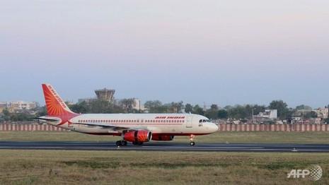 Máy bay Ấn Độ quay về sân bay vì … 'thấy chuột' - ảnh 1