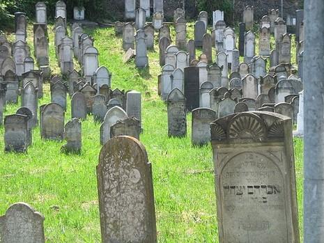 Mỹ: Hơn 100 bia mộ tại nghĩa trang Do Thái bị lật tung - ảnh 2