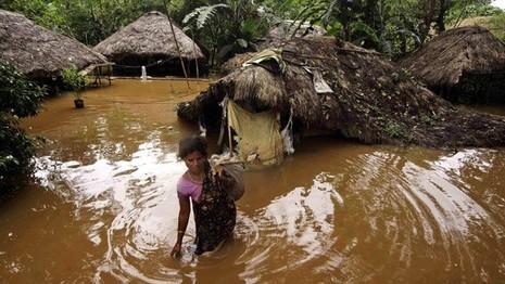 48 người chết trong lũ lụt miền đông Ấn Độ - ảnh 1