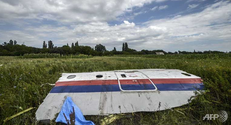 Xuất hiện mảnh vỡ nghi của tên lửa BUK bắn hạ MH17 - ảnh 1