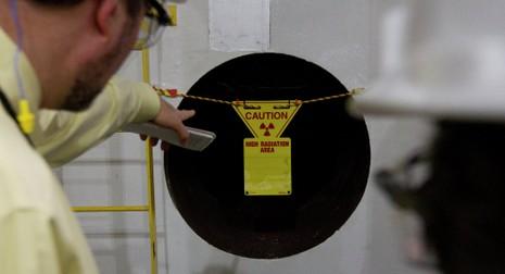 Indonesia sẽ có nhà máy điện hạt nhân đầu tiên vào 2024 - ảnh 1