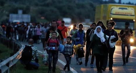 Dân tị nạn Syria được phép vào Áo, Đức - ảnh 1