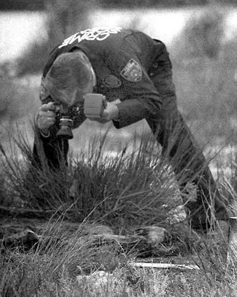 Joel Rifkin  - Đồ tể chuyên giết 'gái bán hoa' rồi chặt xác - ảnh 1