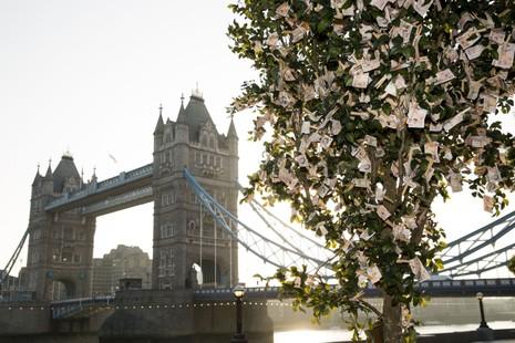 Vì sao cây xanh ở London trị giá đến 204.000 tỉ đồng? - ảnh 1