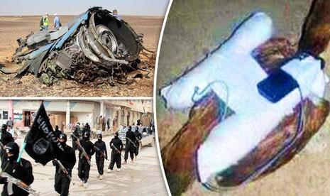 IS âm mưu đánh bom chiến đấu cơ Nga bằng ... chim trời - ảnh 1