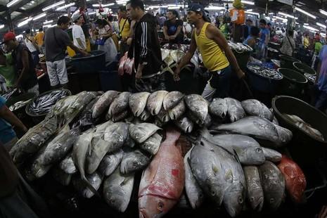 Cuộc chiến giành vùng đánh bắt cá trên biển Đông - ảnh 1