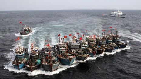 'Hạm đội' tàu cá Trung Quốc càn quét nguồn cá khắp thế giới - ảnh 1