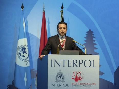 Interpol bổ nhiệm chủ tịch người Trung Quốc