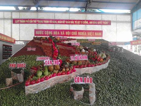 Chiêm ngưỡng bản đồ Việt Nam được kết bằng... 2 tấn trái cây - ảnh 1