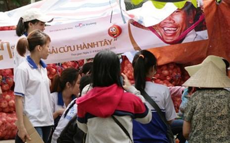 'Giải cứu' hành tây giúp nông dân Đà Lạt - ảnh 3