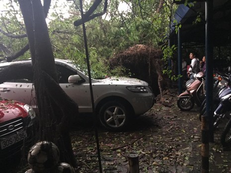 Hà Nội mưa giông kinh hoàng, cây đổ, xe lật, nhà bật móng - ảnh 9