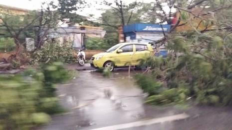 Hà Nội mưa giông kinh hoàng, cây đổ, xe lật, nhà bật móng - ảnh 3