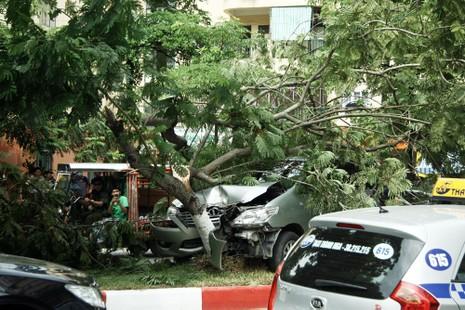 Innova 7 chỗ bẹp dúm sau khi tông gẫy đôi cây trên phố Hà Nội  - ảnh 4