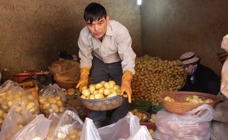 Đà Lạt lạicho nhập khoai tây Trung Quốc vào chợ bán. Ảnh: C.Thành