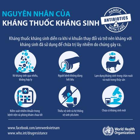 WHO khuyến cáo 5 điểm cần lưu ý khi sử dụng thuốc kháng sinh - ảnh 1