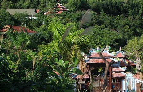 Thanh tra Chính phủ chính thức trả lời vụ 'biệt phủ trăm tỉ' ở Đà Nẵng - ảnh 1